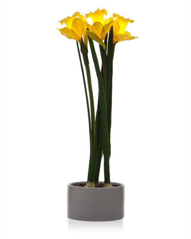 Светильник светодиодный в вазе Paradessa «Нарциссы» фото