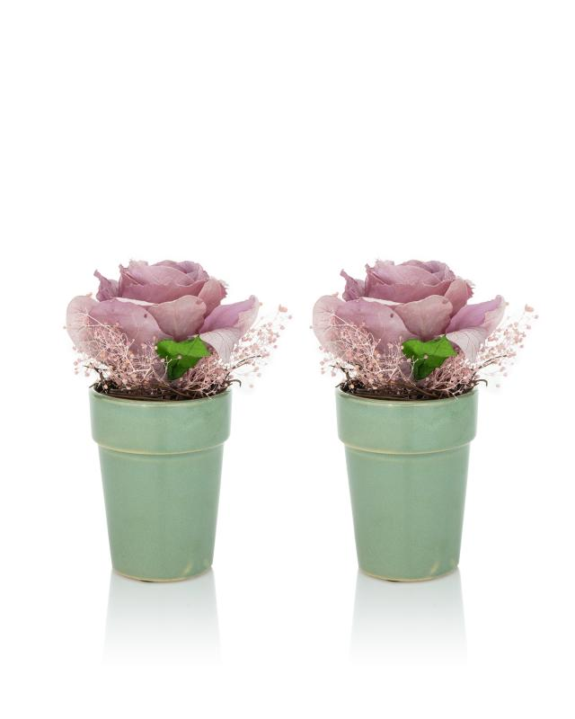Цветочная композиция Роза, 2 шт. фото